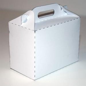 https://metaquip.nl/mq2015/wp-content/uploads/2015/01/kartonnen-doosje-op-maat-model1-45graden.jpg